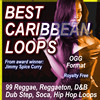 BEST CARIBBEAN LOOPS OGG.zip
